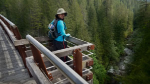 Kinsol Trestle on Vancouver Island, British Columbia Canada looking down