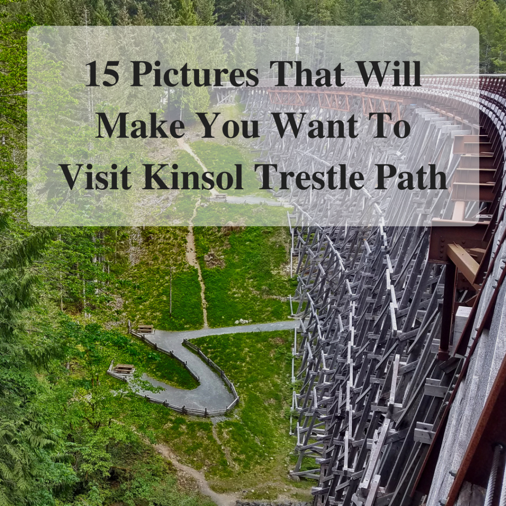 15 Pictures That Will Make You Want To Visit Kinsol Trestle Path