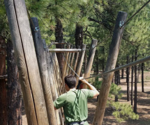 Learn about your Significant Other on a Tree Adventure Course Hunter obstacle