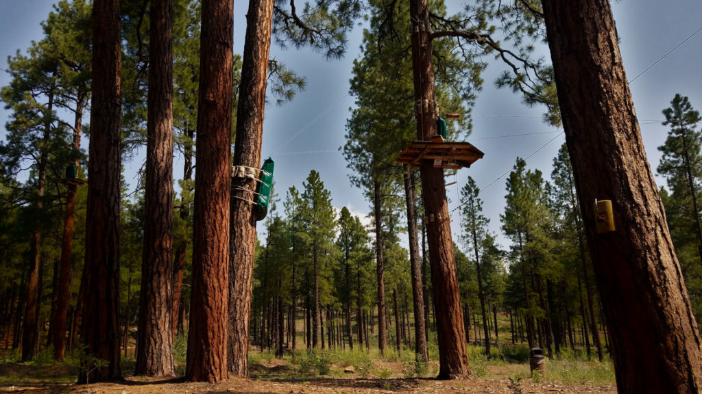5 Tips for Arizona Zip Line Adventure Tree pad