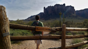 11 Photographs that Will Cause you to Hike Treasure Loop Trail entrance cattle
