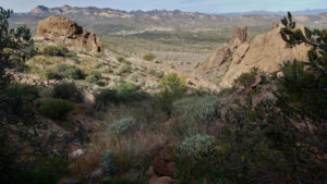 11 Photographs that Will Cause you to Hike Treasure Loop Trail entrance view (1)