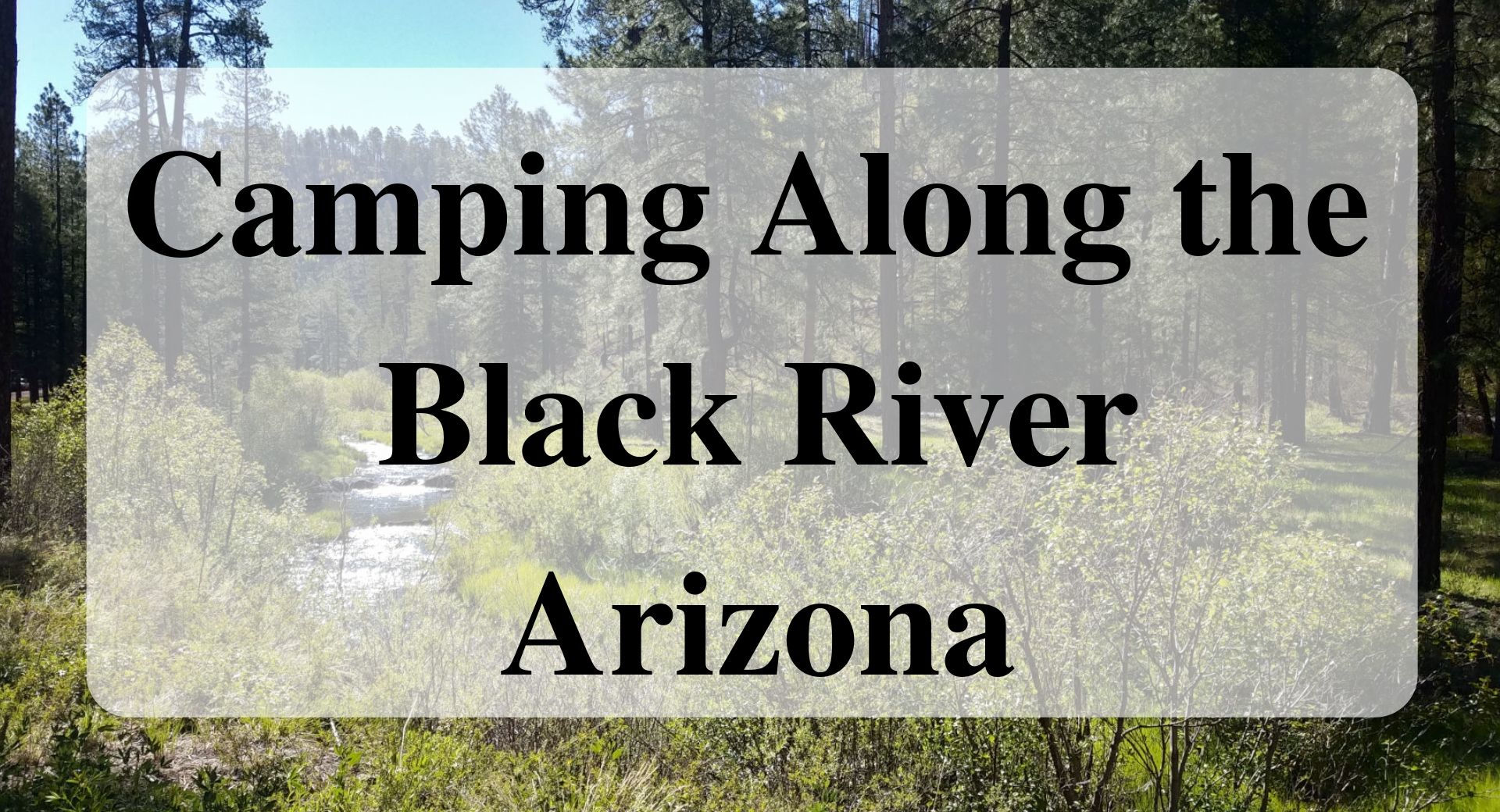 Camping Along the Black River Arizona Forever Sabbatical