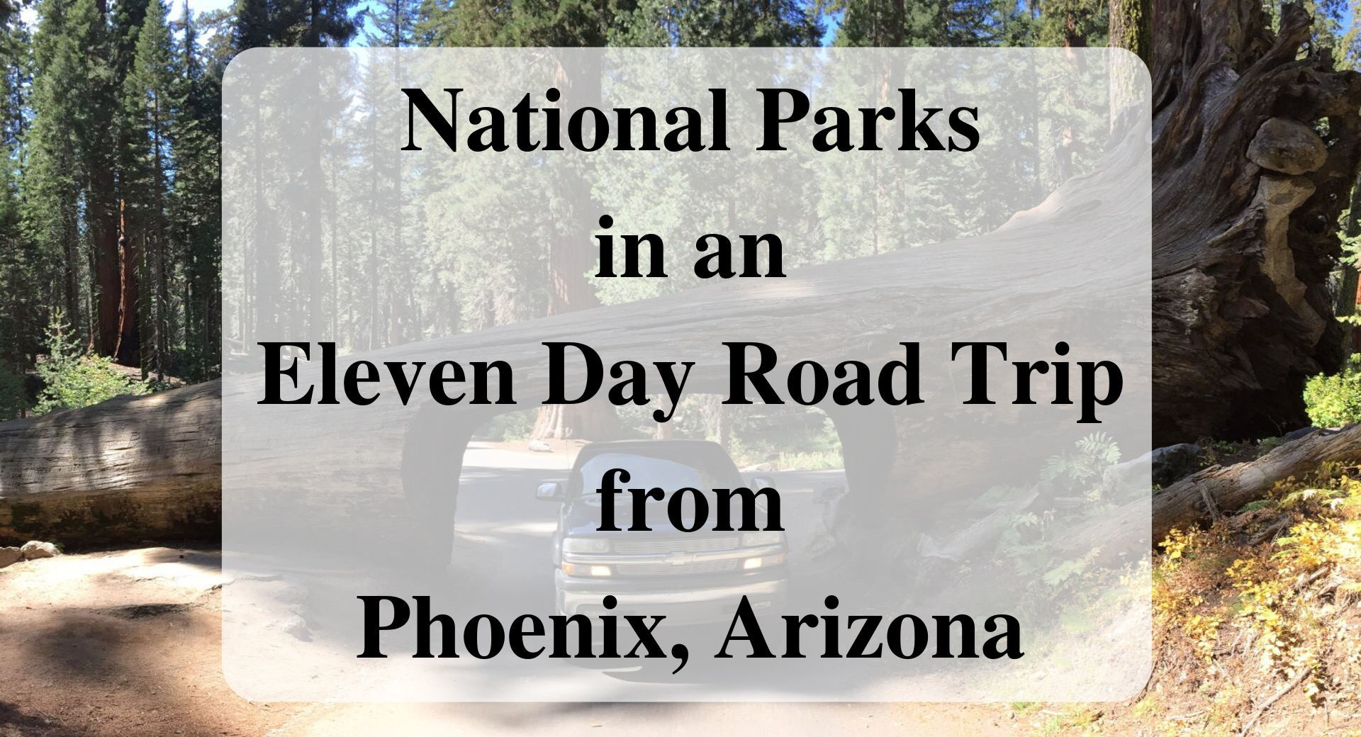National Parks in an Eleven Day Road Trip from Phoenix, Arizona Forever Sabbatical