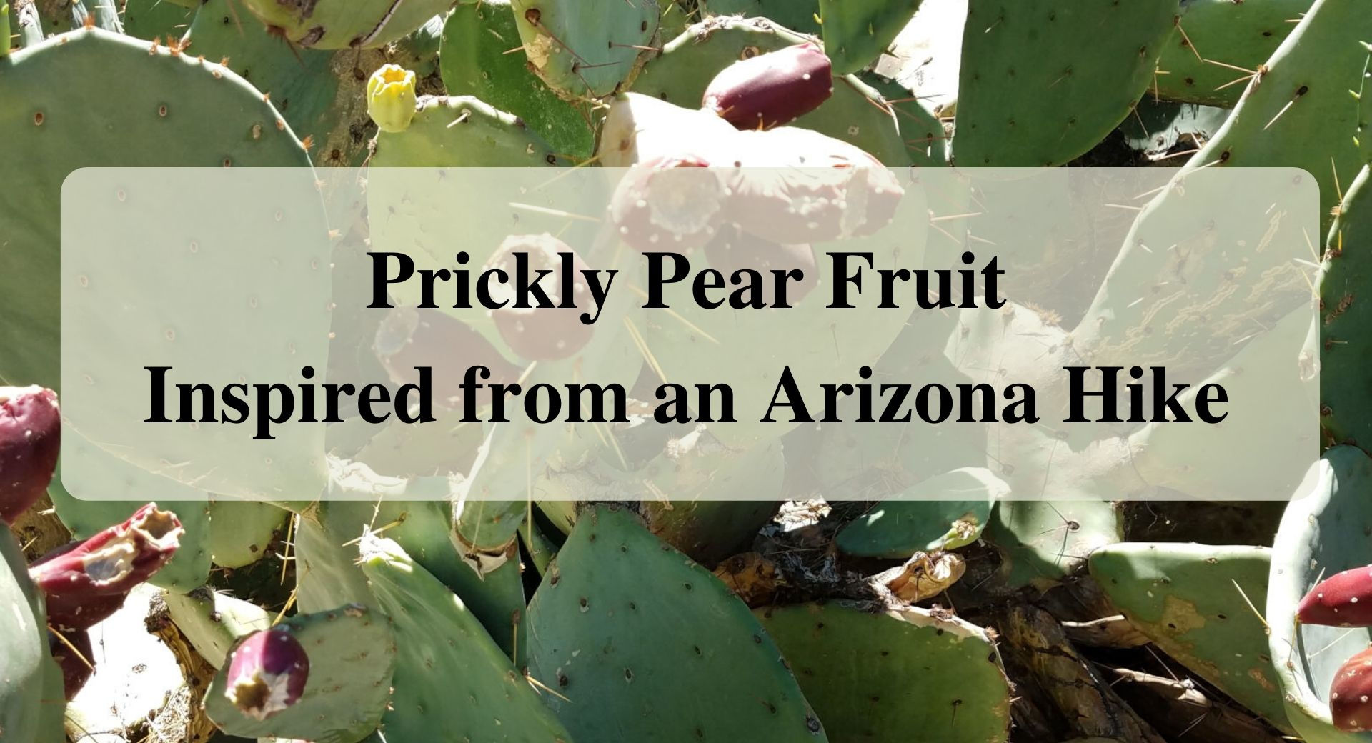 Prickly Pear Fruit Inspired from an Arizona Hike Forever sabbatical