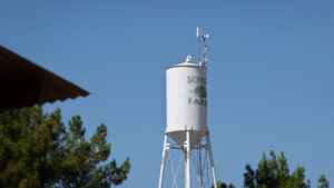 Schnepf_Farms_Water_Tower_Queen_Creek_Arizona_Forever_Sabbatical_name