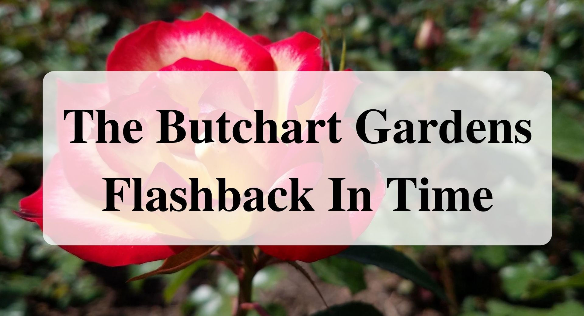 The Butchart Gardens Flashback In Time Forever Sabbatical