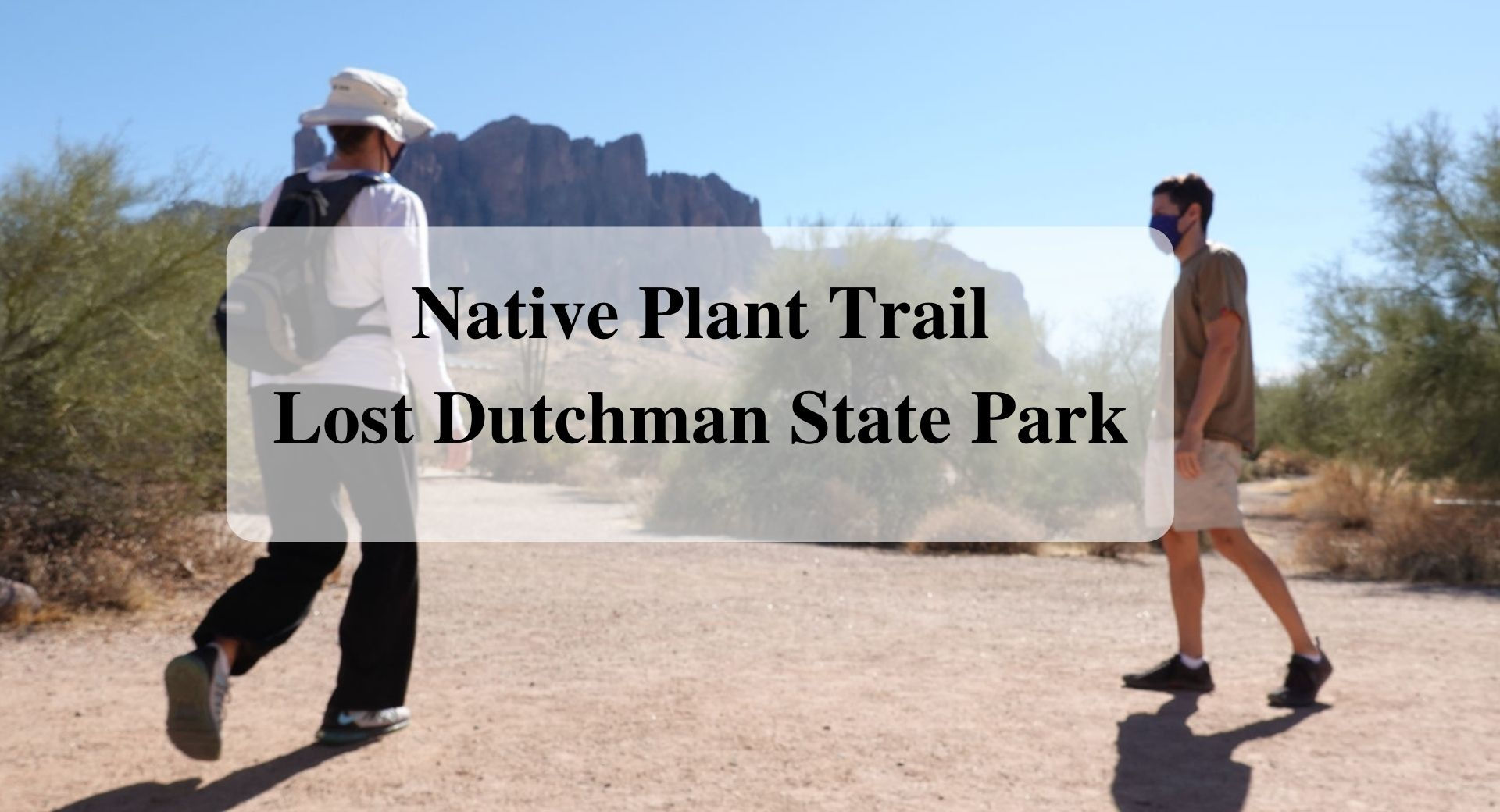 Native Plant Trail Lost Dutchman State Park, Forever sabbatical