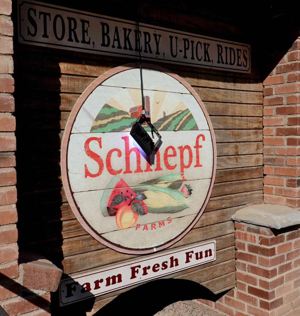 Schneph Foodie Trail, Forever Sabbatical