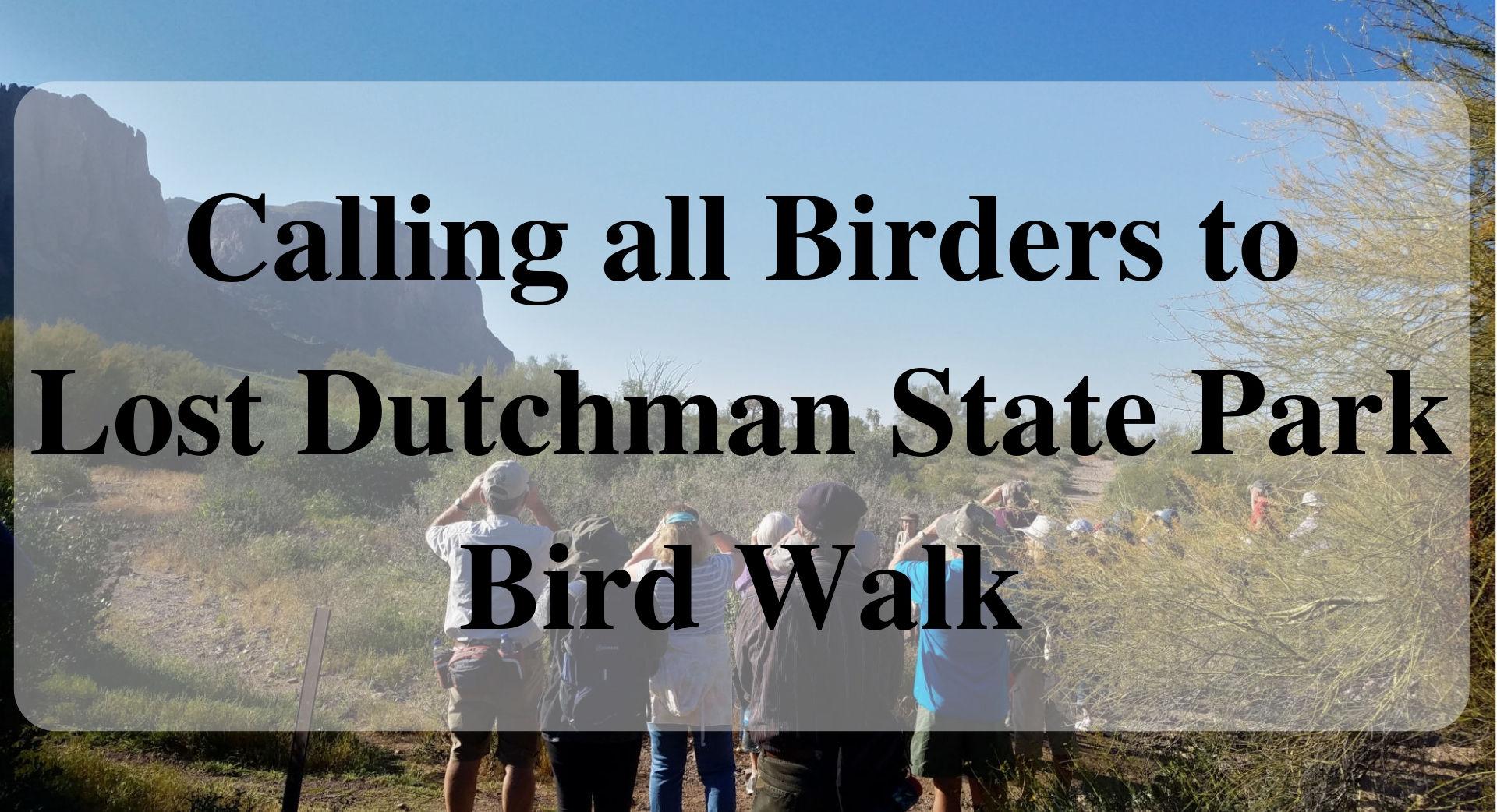 Bird Walk Forever Sabbatical main