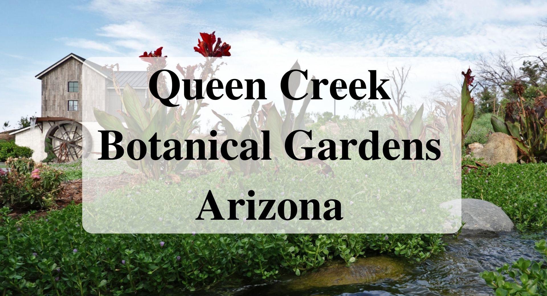 Queen Creek Botanical Gardens Arizona Forever Sabbatical